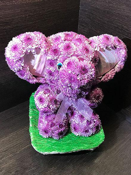 цветы с доставкой - Слоненок