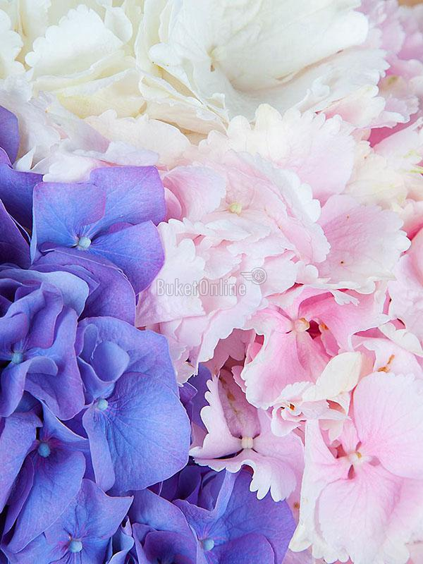 цветы с доставкой - Нежное признание