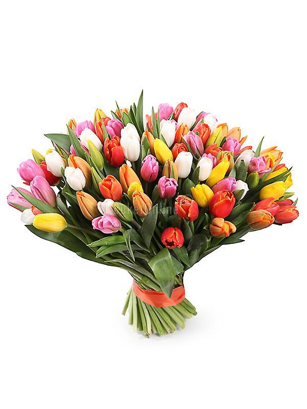 101 тюльпан (микс)