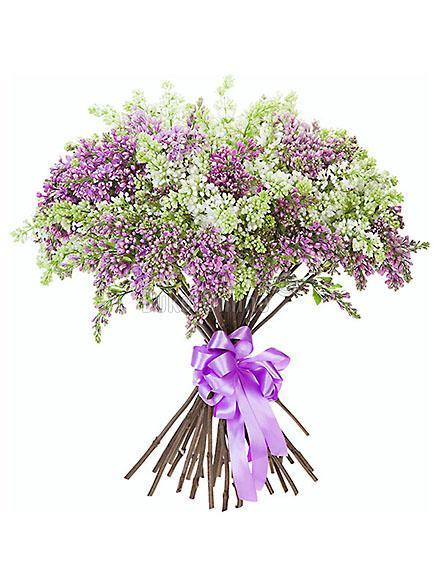 Букет Чудо весны / доставка цветов бесплатно по Москве (в пределах МКАД).