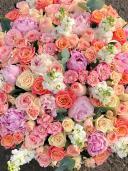 Расцвет красоты