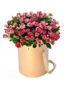 Цветы в коробке - Корнелия