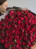 101 Роза ''Ред Пиано''
