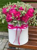 Пионовидная роза в шляпной коробке