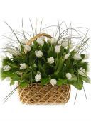 Моей королеве - букет тюльпанов
