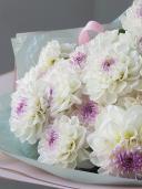 Букет георгин - 19 цветков