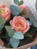 5 розовых роз и эвкалипт