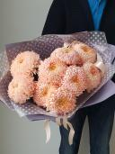 Одноголовые хризантемы цвета грейпфрут