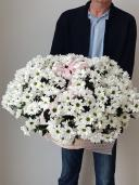 Корзина с хризантемой средняя