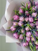 51 тюльпан с лавандой